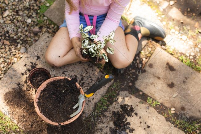 A Caucasian girl with long blonde hair enjoying time in a sunny garden, exploring, planting a seedling in a pot, holding a plant