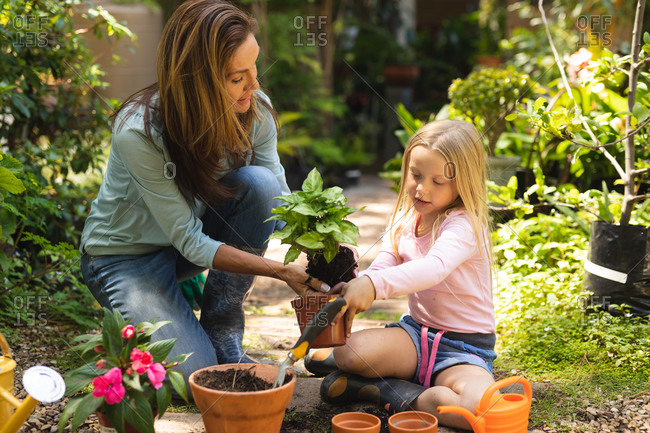 A Caucasian woman and her daughter enjoying time together in a sunny garden, planting a seedling in a plant pot