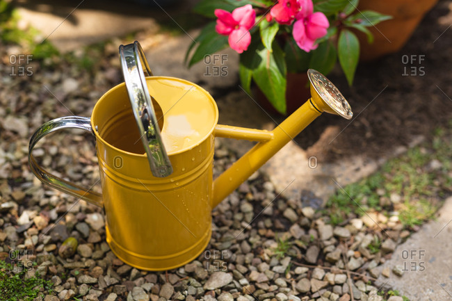 Close up of a yellow watering can used for watering plants placed in a sunny garden next to a pink flower in a pot