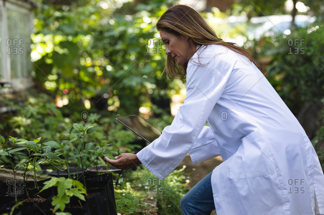A Caucasian woman with long brown hair wearing a lab coat, walking in a sunny garden, touching the leaves of plants and using a tablet computer