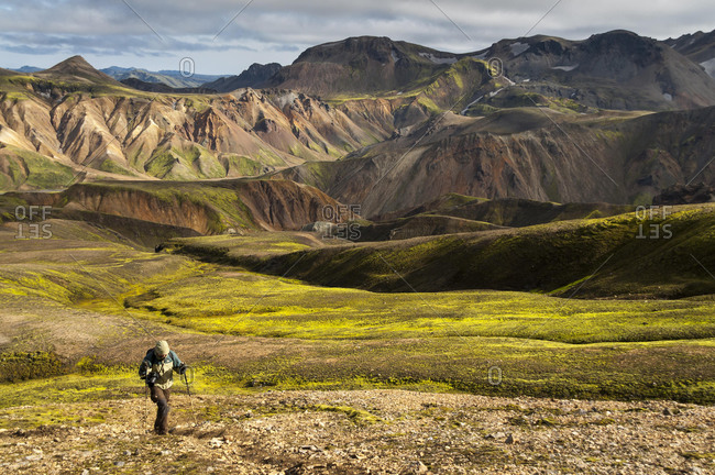 Hiker, rhyolite mountains at the back, Landmannalaugar, Fjallabak Nature Reserve, Highlands of Iceland, Iceland, Europe