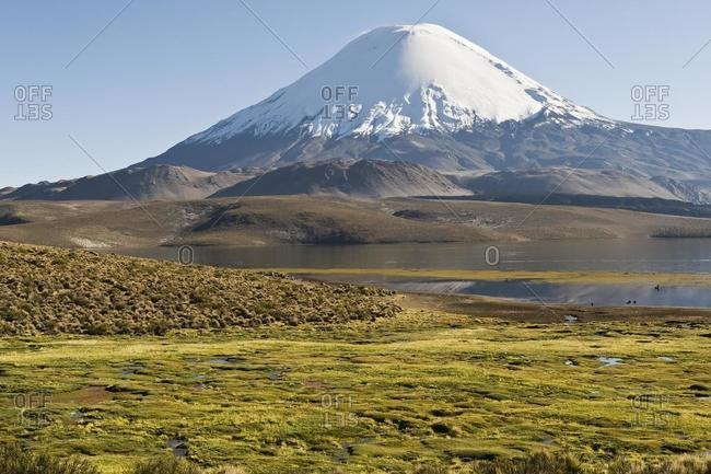 Parinacota volcano, Lauca national park, UNESCO Biosphere Reserve, Arica and Parinacota Region, Chile, South America
