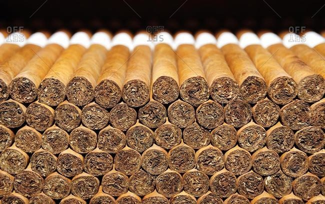 Cigars, cigar factory in Punta Cana, Dominican Republic, Caribbean, Central America