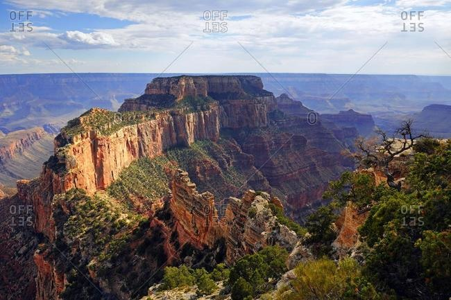 Evening mood, Grand Canyon North Rim, Cape Royal, Arizona, USA, America, North America