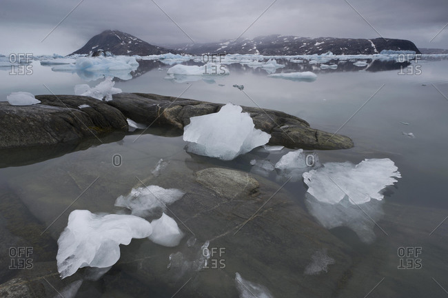 Ice in the Johan Petersen Fjord, East Greenland, Greenland, North America