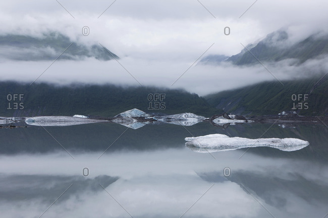 Ice floes on the Valdez Galcier lake, Valdez, USA, North America