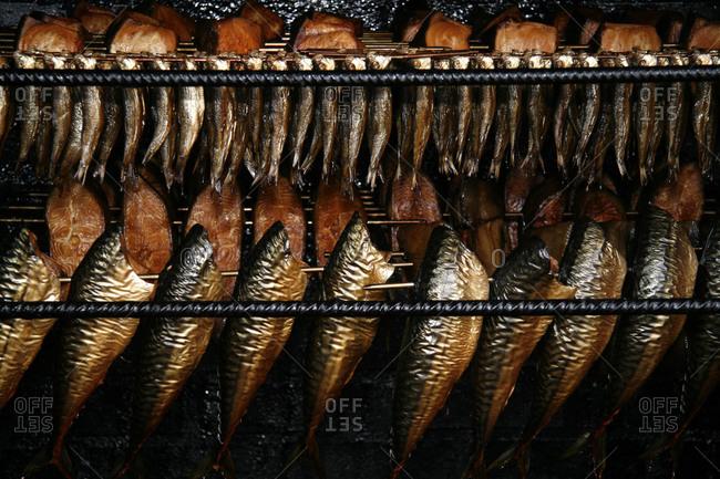 Fish being smoked in the smokehouse, Binz, Ruegen, Germany, Europe