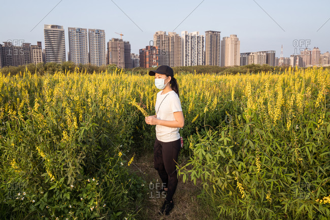 Young ethnic female in protective mask and casual clothes holding green branch and looking away while standing in field near modern city in sunny spring day