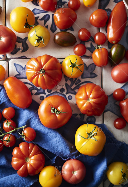 Heirloom tomatoes on a tile blue and whit tile background