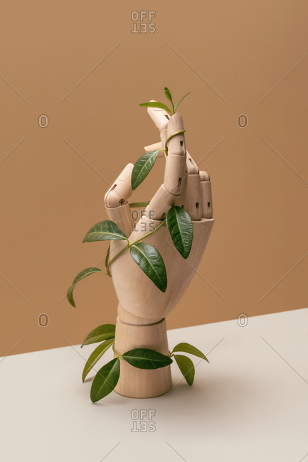 Wooden mannequin's hand covered in climbing vines on a duotone beige background with copy space. Ecological concept.