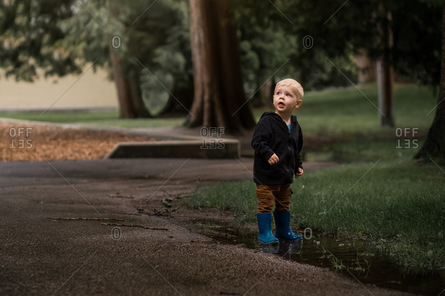 Toddler boy standing in puddle beside path looking up at the trees