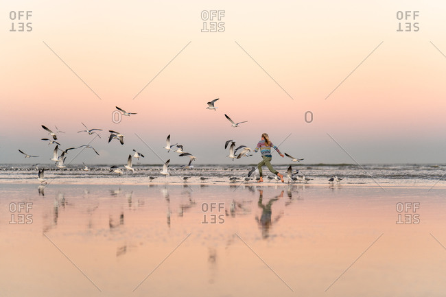 Girl running towards a flock of seagulls on a beach at sunset