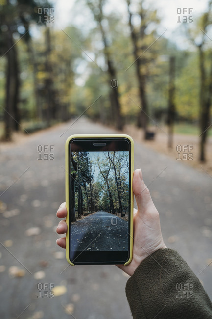 Young woman photographing tree lined autumn park on smartphone, personal perspective, Florence, Tuscany, Italy
