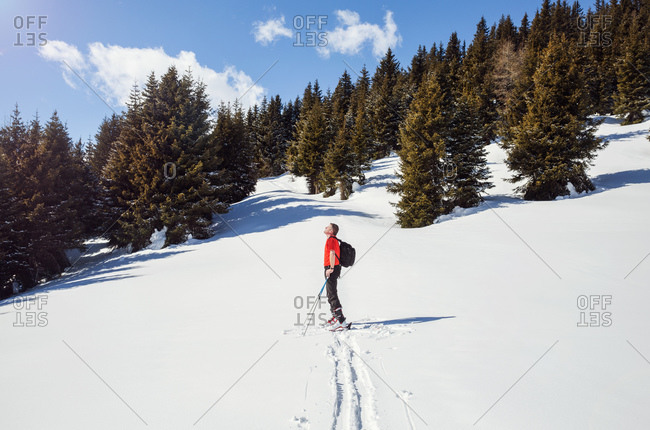 Mature male snowshoer looking up from snow covered mountain landscape, Styria, Tyrol, Austria
