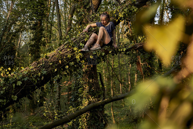 Girl sitting on branch while climbing on tree in forest