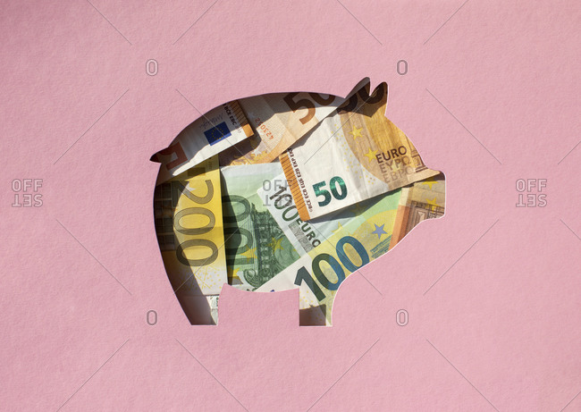Pig shaped hole filled with Euro banknotes