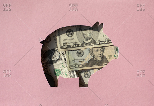 Pig shaped hole filled with Dollar banknotes