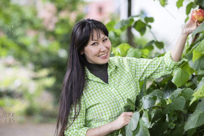 Smiling woman harvesting apple in garden