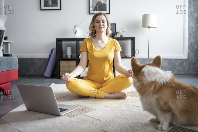Woman with dog practicing yoga in living room at home