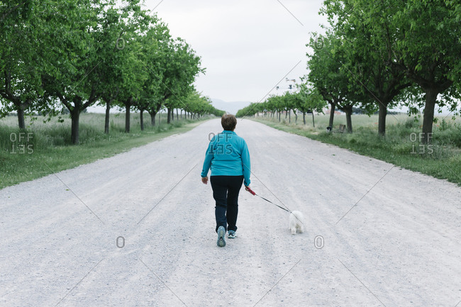 Back view of senior woman going walkies with her dog on alley