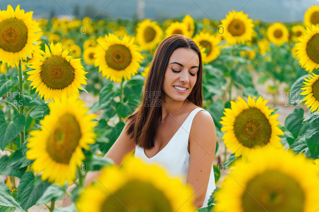 Positive brunette with closed eyes smiling and sitting amidst sunflowers while resting in countryside on summer day