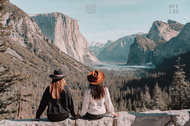 Back view of stylish young female friends in trendy clothes and hats standing near tall sequoia tree in forest while spending time in Yosemite National Park in California