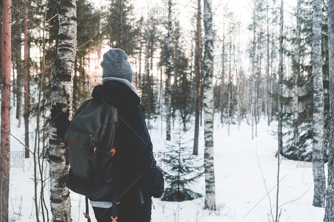 Back view of unrecognizable female traveler in warm outerwear and backpack standing contemplating landscape on snowy path among snow covered spruce trees in winter day in Finland
