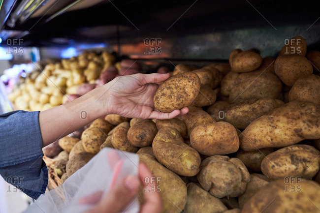 Female hands with picking up potatoes from a basket