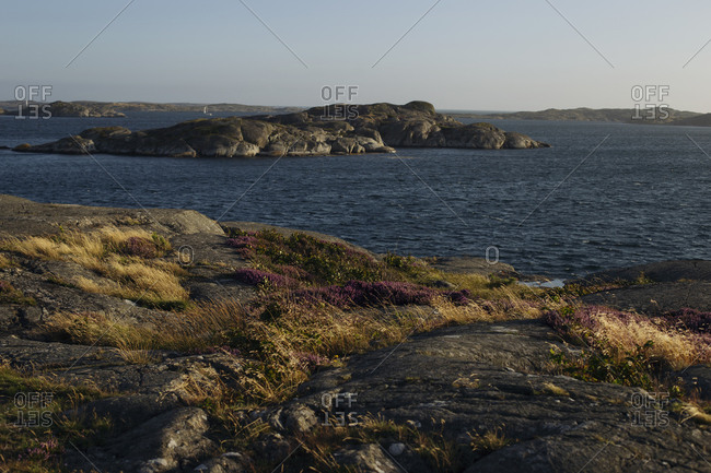 Amazing seascape of sea with lonely rocky coastline with green grass and flowers on cloudy day in summer