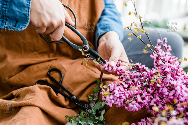 Woman pruning a flower bush