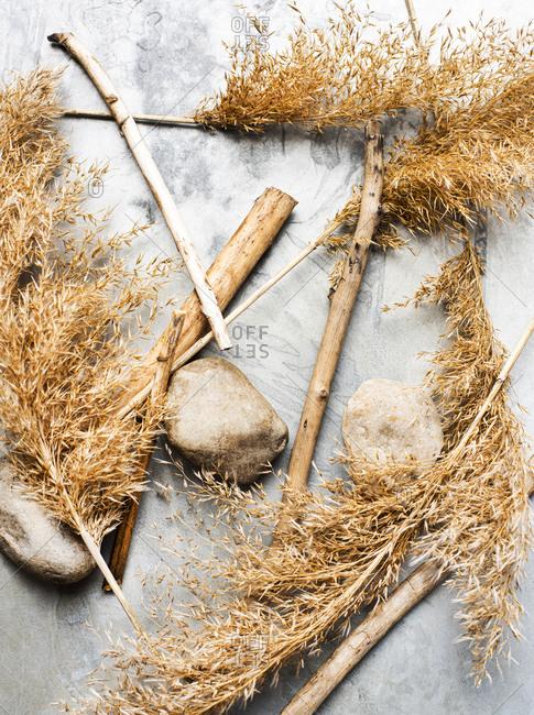 Still life of harvest grass stalks, twigs and stones