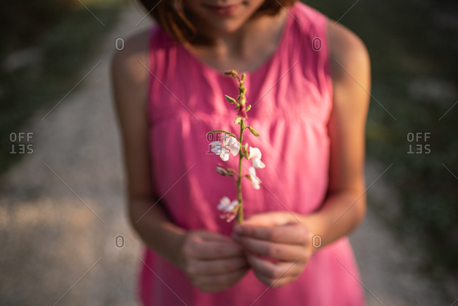 Girl holding flower stalk in golden light