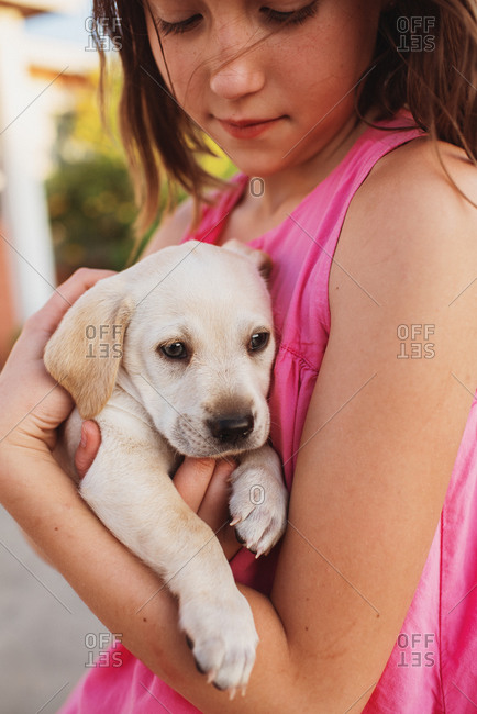 Girl holding young golden retriever puppy