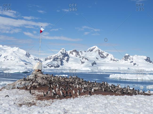Gonzalez Videla Base, a Chilean Research Station in Paradise Bay, Antarctica, Polar Regions