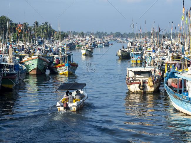 January 2, 2020: The fishing fleet at harbor near the Negombo fish market, Negombo, Sri Lanka, Asia
