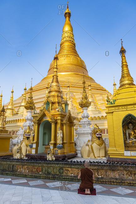January 8, 2020: Monk praying before the Shwedagon pagoda, Yangon (Rangoon), Myanmar (Burma), Asia