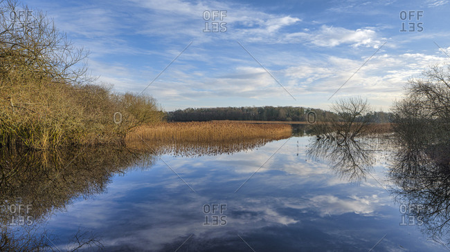 Dromore Nature Reserve, County Clare, Munster, Republic of Ireland, Europe