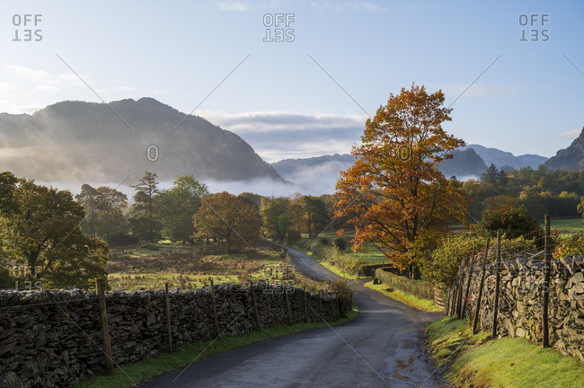 Autumn scene with morning mist in autumn, Borrowdale, Lake District National Park, UNESCO World Heritage Site, Cumbria, England, United Kingdom, Europe