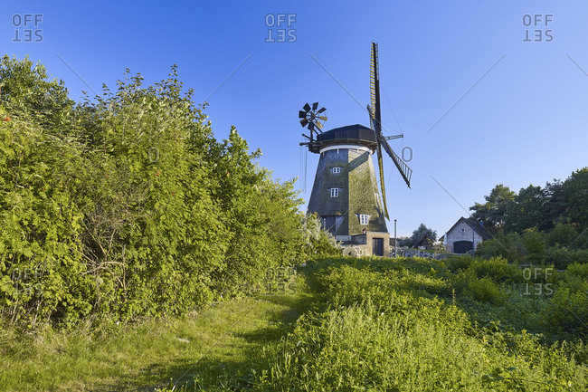 Erdhollander mill near Benz in the Achterland, Usedom, Mecklenburg-Vorpommern, Germany