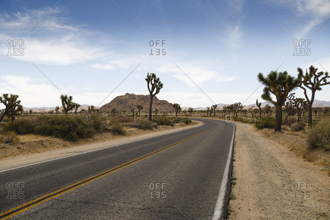 Joshua Tree National Park, Mojave Desert, California, USA