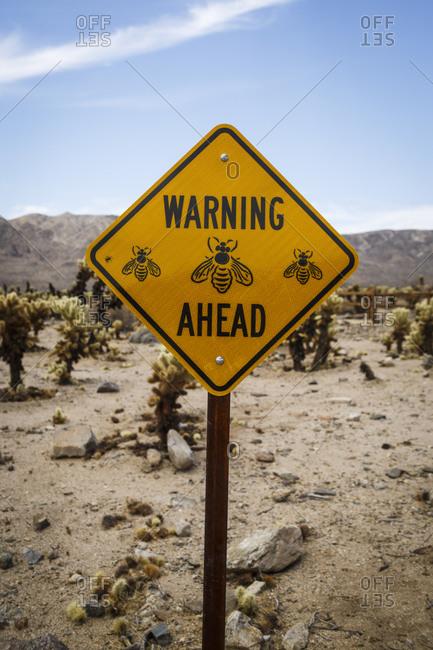 Bees warning, Cholla Cactus Garden in Joshua Tree National Park, Mojave Desert, California, USA