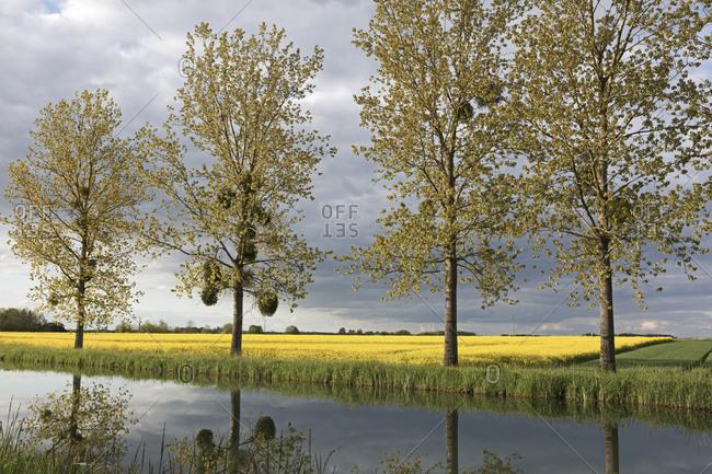 Burgundy Canal, Saint-Jean-de-Losne, Burgundy, France