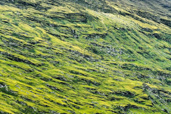 Rob Roy Mountainside, New Zealand