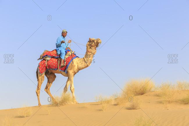 February 10,  2016: Camel Safari, Guide, Thar Desert, Rajasthan, India