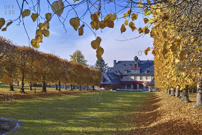 Park of Villa Bergfried, linden alley with manor house, Saalfeld, district Saalfeld Rudolstadt, Thuringia, Germany