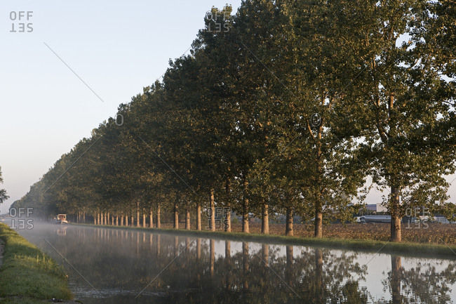 Morning mist on the Canal de Bourgogne, Saint-Jean-de-Losne, Burgundy, France