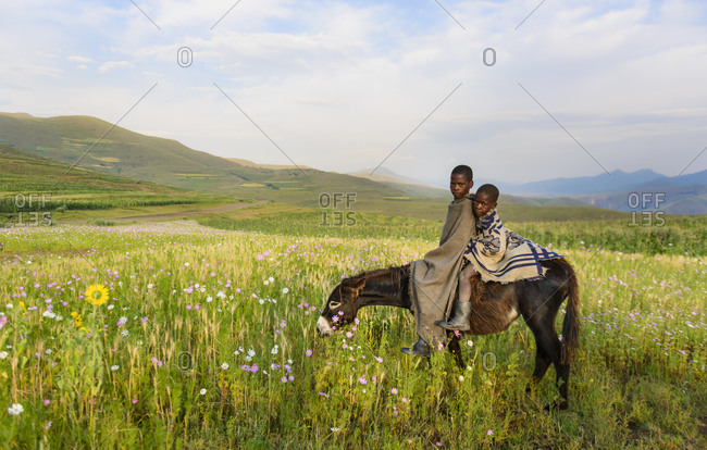February 13,  2015: Basotho boys, Lesotho, Africa