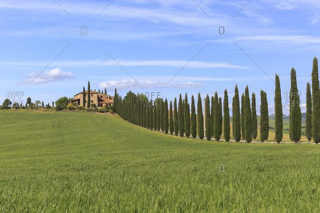 Wide view Poggio Covili, Tuscany, Italy