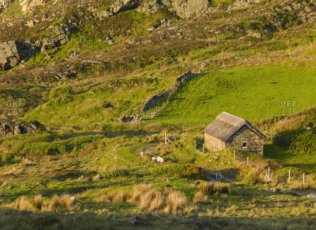 Ireland, Co. Donegal, Rosguill, Tra na Rosann, Stone barn and farm