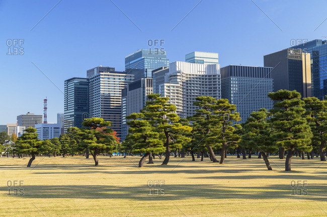 Japan - November 17, 2019: Skyscrapers of Marunouchi and gardens of Imperial Palace, Tokyo, Japan